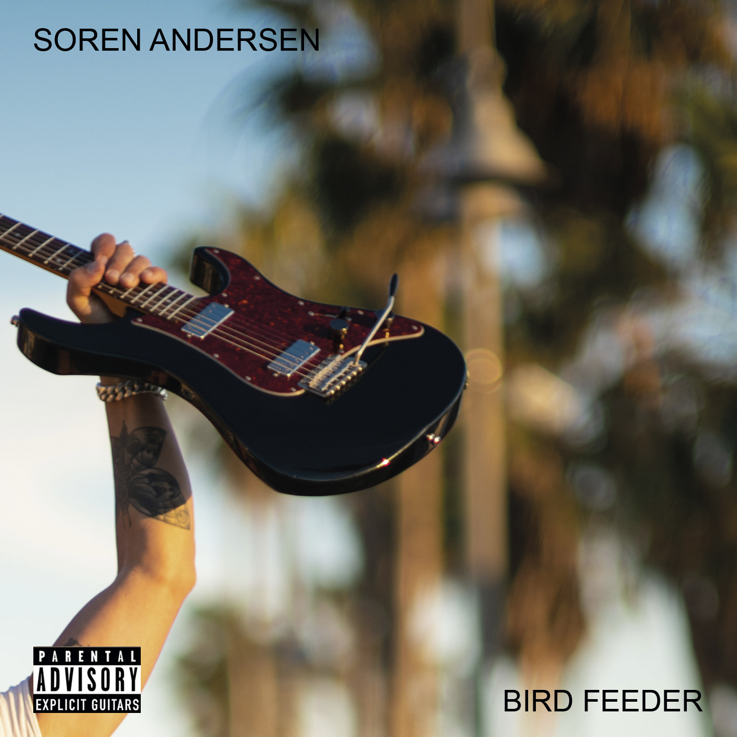 Soren Andersen – Bird Feeder (single)